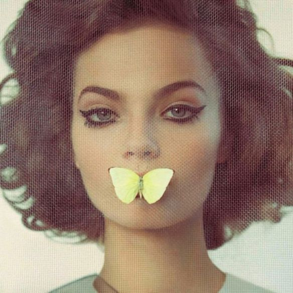 01a42fc12fb163b5a00852f1fbc9c0a0--butterfly-kisses-butterflies